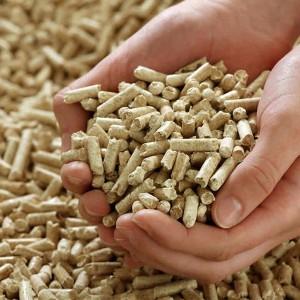 Biomassza, biogáz üzem